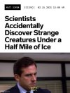 creatures-in-ice-they-were-just-discovered-by-scientists-the-office-dont-michael-scott-steve-...jpeg
