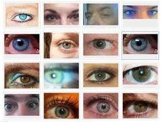 Rh negative eyes | Paranormal Forum: