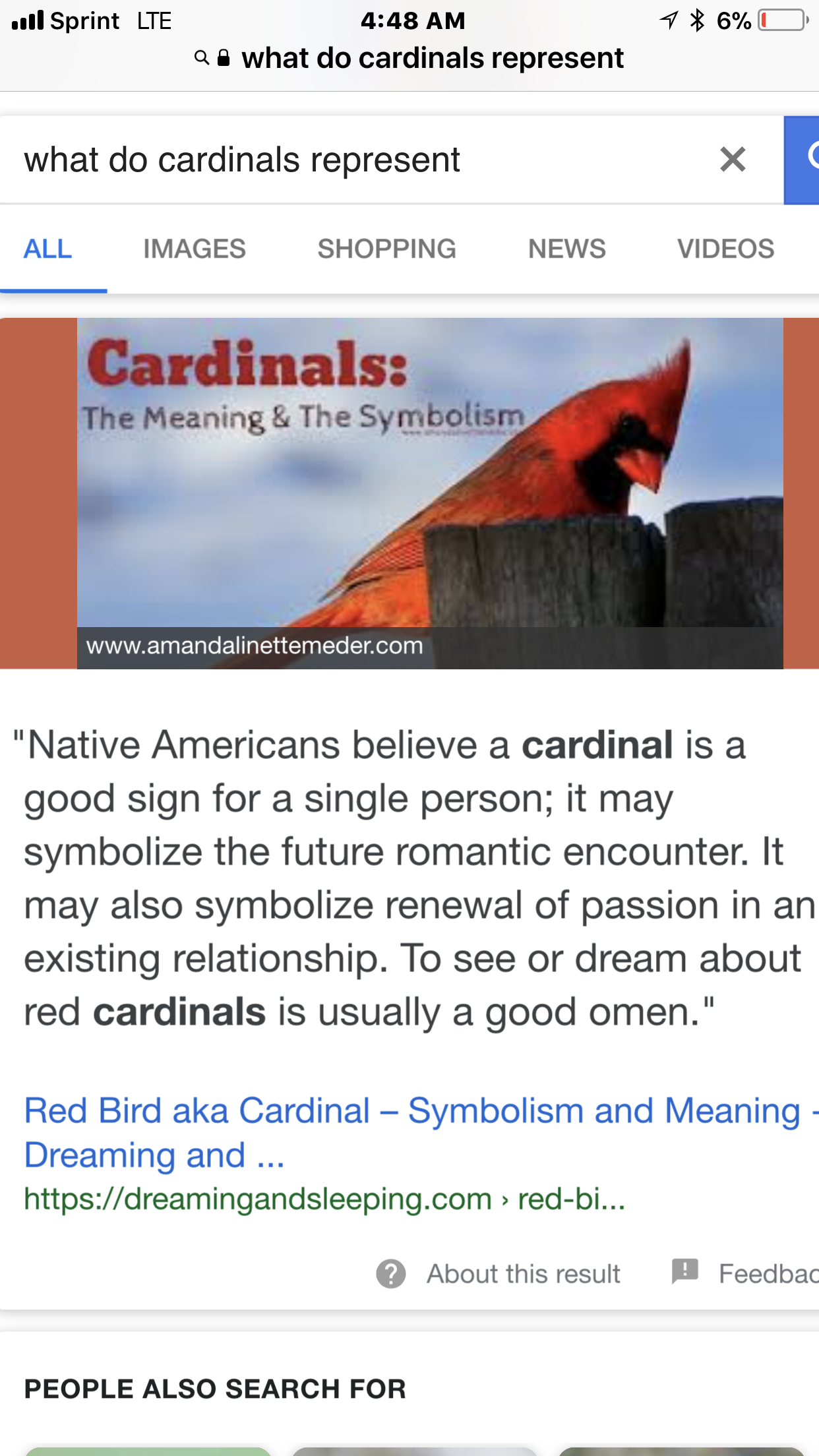 What Does The Cardinal Signify Paranormal Forum Where Things Go