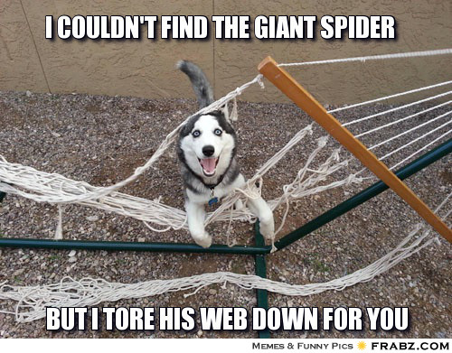 dcd49d3fdb59d55905e32bee451a6633_-the-giant-spider-meme-giant-spider-meme_500-391.jpeg