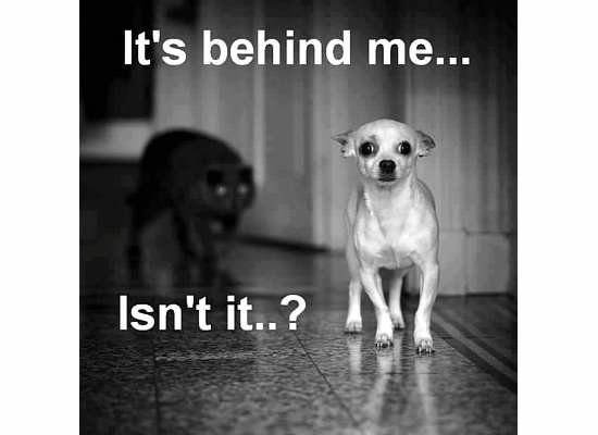 It's behind me....jpg