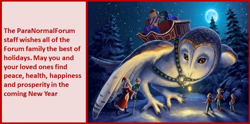 PNF Christmas card owl 2016.jpg