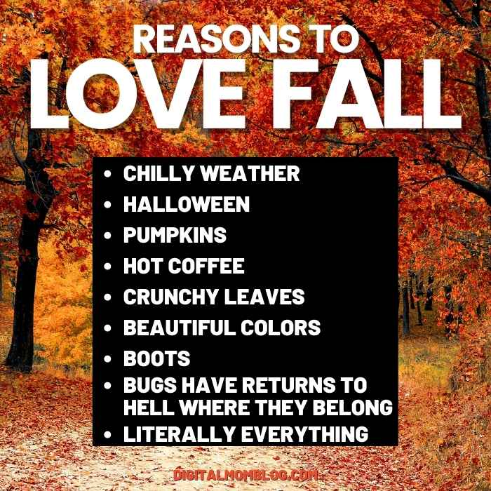 reasons-to-love-fall-meme.jpg